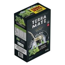 Terere Terra Mate - Caixa 10x500g - Boldo e Menta - Extra Forte - Linha Premium